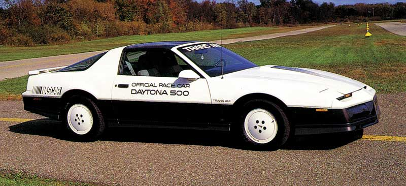 1981 Trans AM Daytona 500 Pace Car Door Decal / Pontiac Windshield Logo Set