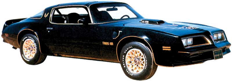1976-78 Trans-Am Special Edition Black Center with Matte Gold / Light Gold Hood Bird Decal