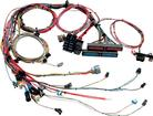 Painless 6.0L Ls2 Efi Harness - Standard Length