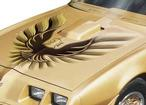 1980 Trans Am 5 Color Dark Gold to Light Gold with Ochre Accents and T/A 4.9 Shaker Decal Set