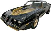 1979 Trans-Am Special Edition Bandit 5 Color Gold Decal Sit with Pre-Molded Stripes