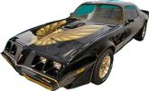 1981 Trans-Am Special Edition Bandit 2 Color Light Gold/ Dark Gold Decal Set with Pre-Molded Stripes