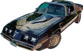 1981 Trans AM Special Edition Bandit Turbo Dark Gold Decal / Stripes Set with Pre-Molded Stripes