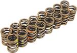 1965-91 GM 396-454 Big Block, 1960-76 Mopar Big Block 383-440 (Except Hemi) Dual Valve Springs