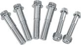 67-81 Detroit Speed Polished Stainless Steel Body Bolt Set