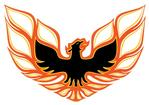 73-78 BIRD REAR SPOILER DECAL (ORANGE/DK ORANGE/BLACK) 7.2