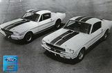 "1965 Mustang GT350 Shelby Race and Steet Versions 12"" x 18"" Vintage Photo"