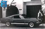 "1967 Shelby GT500-Model Photo Shoot 12"" x 18"" Vintage Photo"