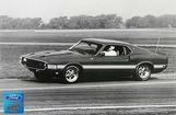 "1969 Shelby GT500 Fastback At The Track 12"" x 18"" Vintage Photo"