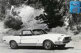 "1968 GT500 Convertible Model Photo Shoot 12"" x 18"" Vintage Photo"