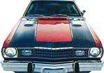 1973 Duster Hood Black Out Set
