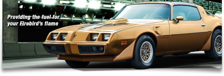 Graphic of a 79 Trans AM vehicle